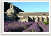senanque_abbey1