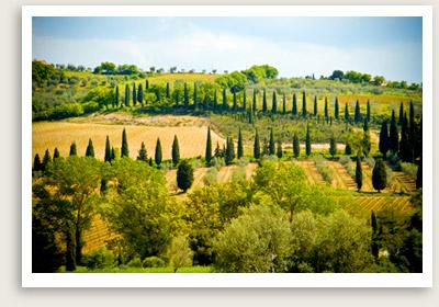 tuscanyvacdelorcia