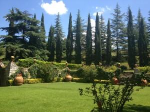 Tuscany & Umbria - Chianti